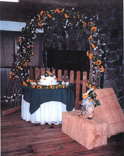 Western Wedding Decorations Ideas